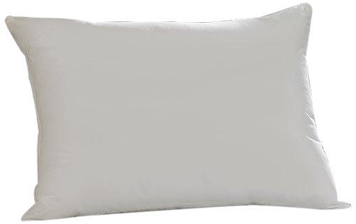 Aller-Ease pillow